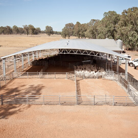 SHEEP YARD COVER - Industrial Sheds