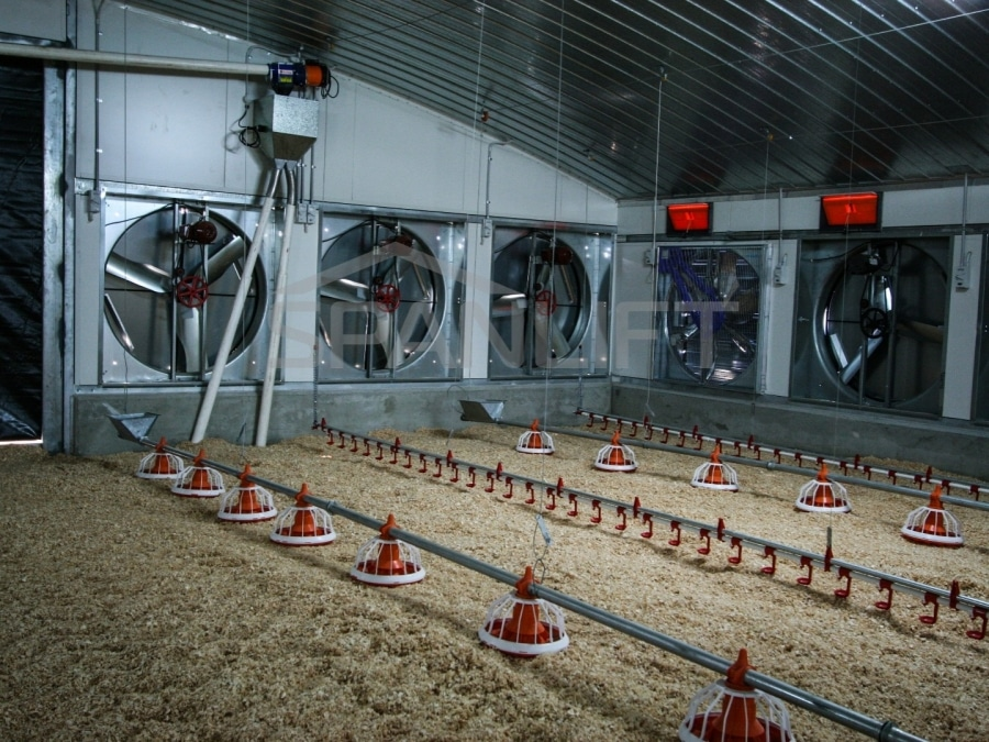 Conventional Broiler Shed 4 Spanlift 98plUx - Conventional Broiler Shed