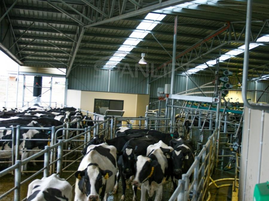 Dairy Sheds 2b5e2iv - Resources