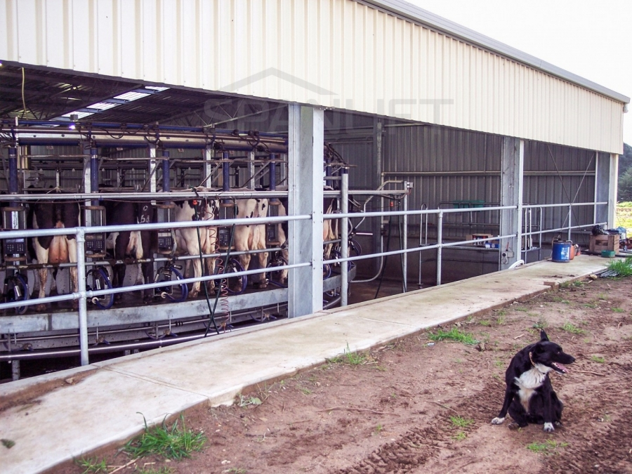 Dairy Sheds 4gkxX5c - Resources