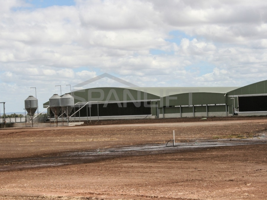 Farrowing Shed 5 Pork Spanlift Ps q3P - Farrowing Shed