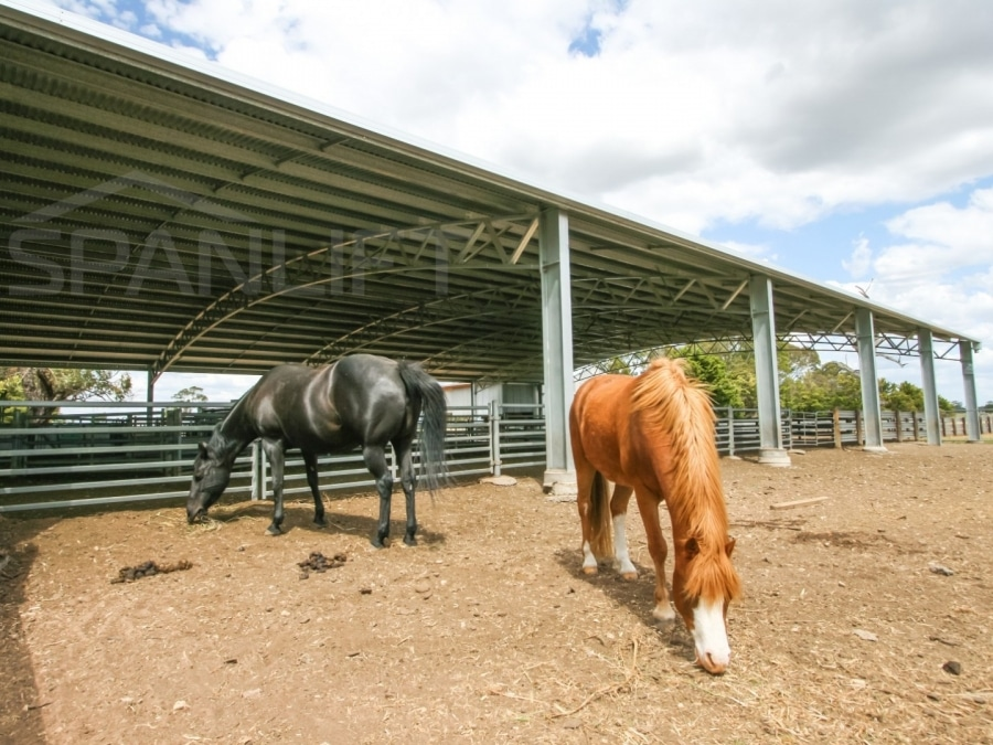 Dressage Riding Arena 2 Spanlift 85cuIy - Gallery