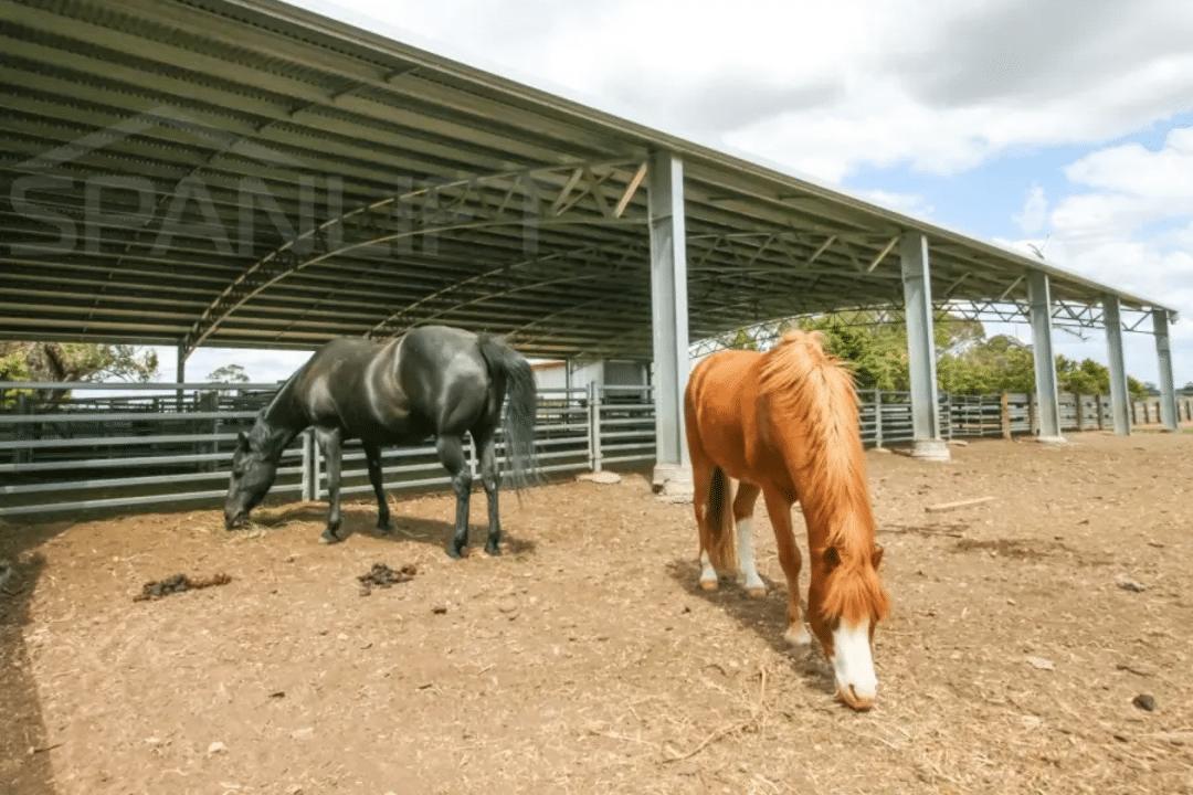 Dressage Arena - Equestrian Arena Builders