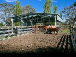 Beef Yard Cover 20 Spanlift IKKWgX 300x225 - 3 Reasons to Consider a Cattle Yard Cover