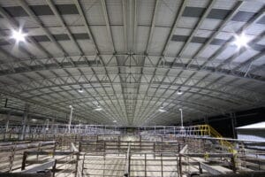 NRLE 12000m2 5 300x200 - 3 Reasons to Consider a Cattle Yard Cover